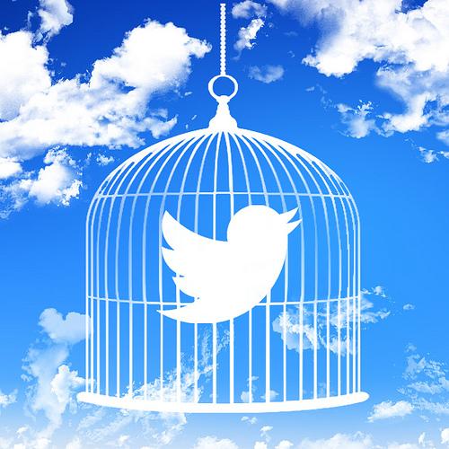 Photo of Twitter: toglietemi tutto ma non la mia @!
