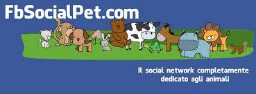 Un social tutto per gli animali