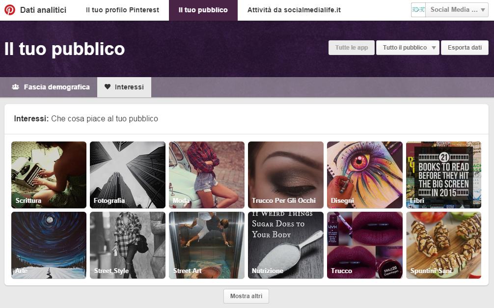 Interessi Pubblico - Guida Pinterest Analytics