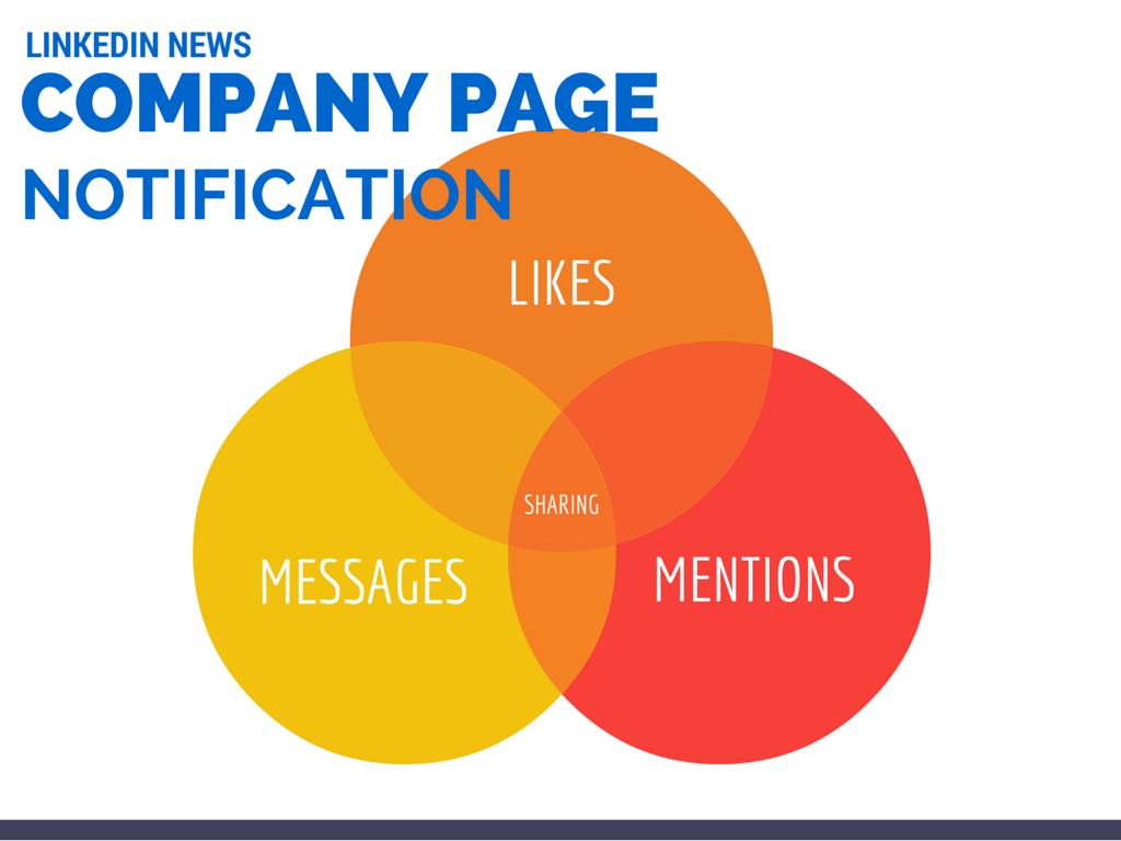 Photo of Le Nuove Notifiche (multicolore) delle LinkedIn Company Page