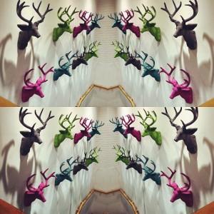 Instagram layout  - Esempio di collage immagini